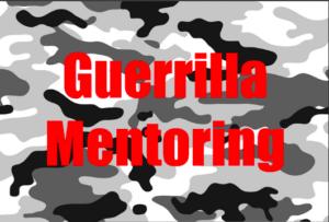 GuerrillaMentoring